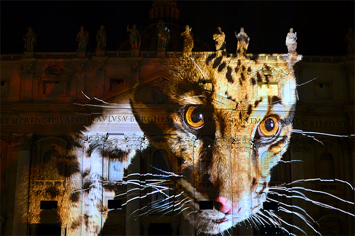 vatican-photo-ark-wildlife-photos-3