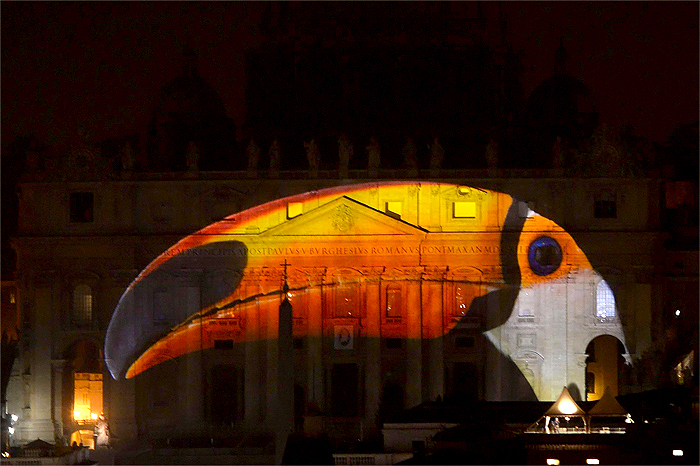 vatican-photo-ark-wildlife-photos-4
