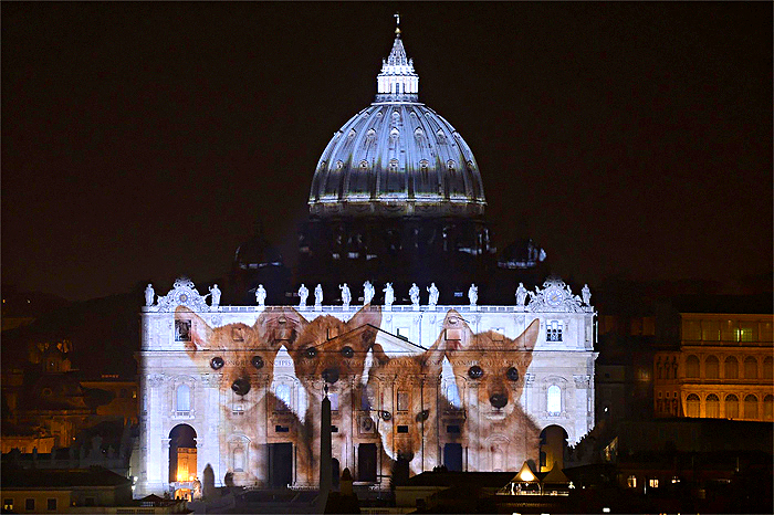 vatican-photo-ark-wildlife-photos-7